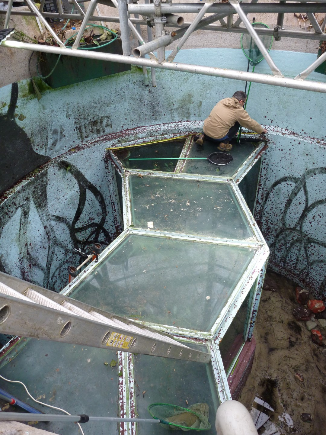 Aquarium Technology Limited to install replacement walk through acrylic tunnel
